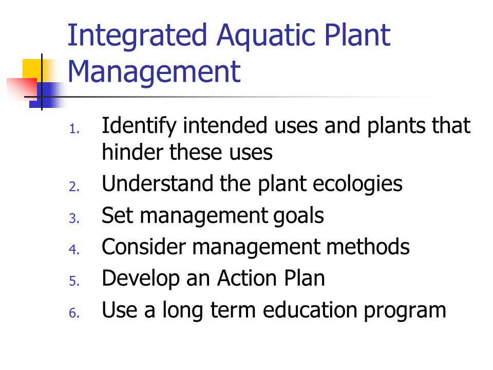 Integrated Aquatic Plant Management 1. Identify intended uses and plants that hinder these uses 2. Understand the plant ecologies 3. Set management go