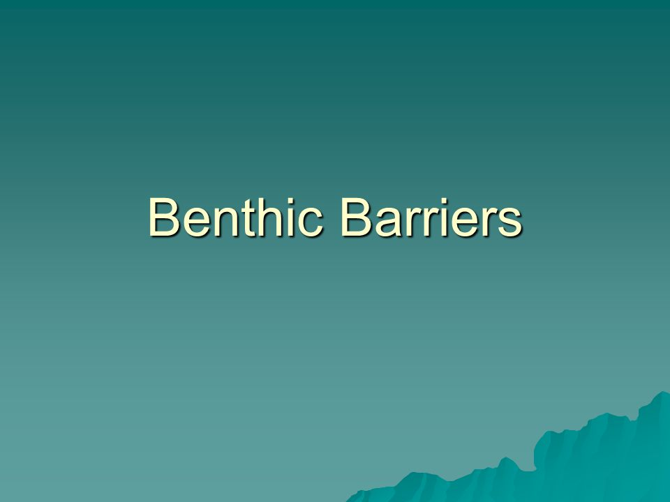 What is a Benthic Barrier.