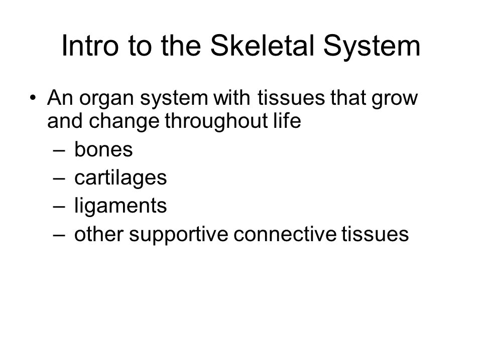Intro to the Skeletal System An organ system with tissues that grow and change throughout life – bones – cartilages – ligaments – other supportive con
