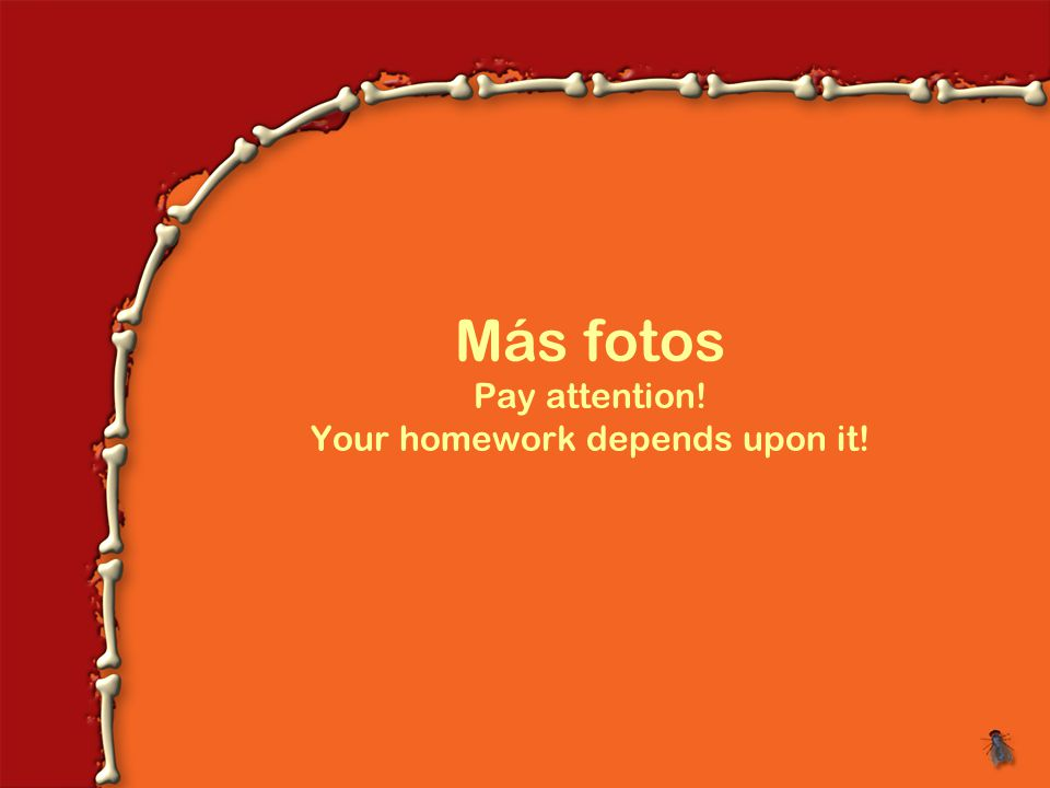 Más fotos Pay attention! Your homework depends upon it!