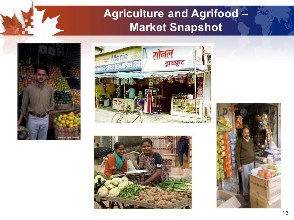 16 Agriculture and Agrifood – Market Snapshot