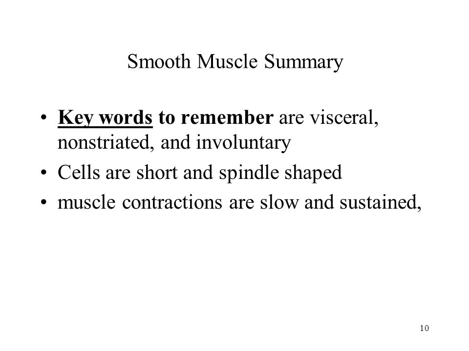 10 Smooth Muscle Summary Key words to remember are visceral, nonstriated, and involuntary Cells are short and spindle shaped muscle contractions are s