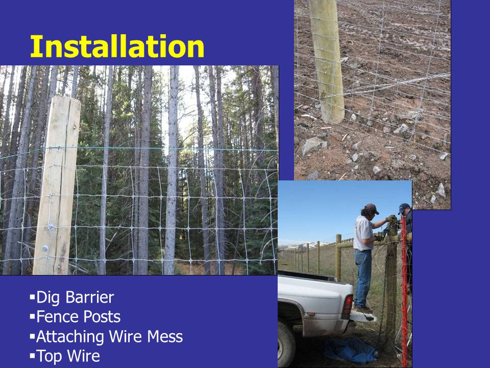 Installation  Dig Barrier  Fence Posts  Attaching Wire Mess  Top Wire