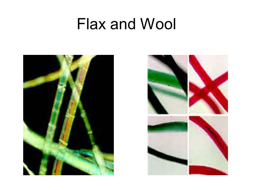 Flax and Wool