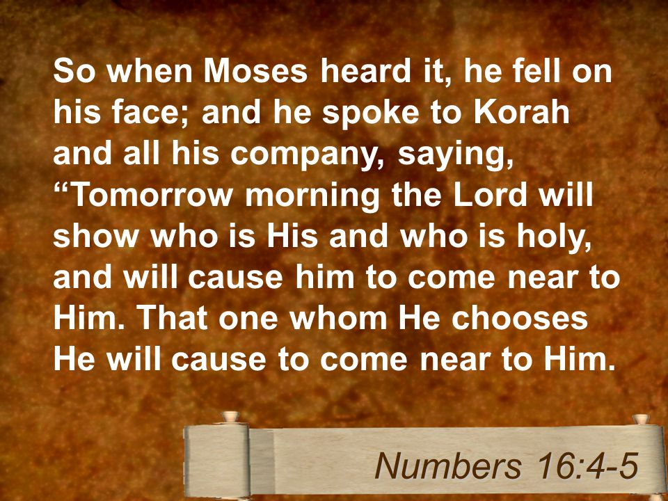 So when Moses heard it, he fell on his face; and he spoke to Korah and all his company, saying, Tomorrow morning the Lord will show who is His and who is holy, and will cause him to come near to Him.