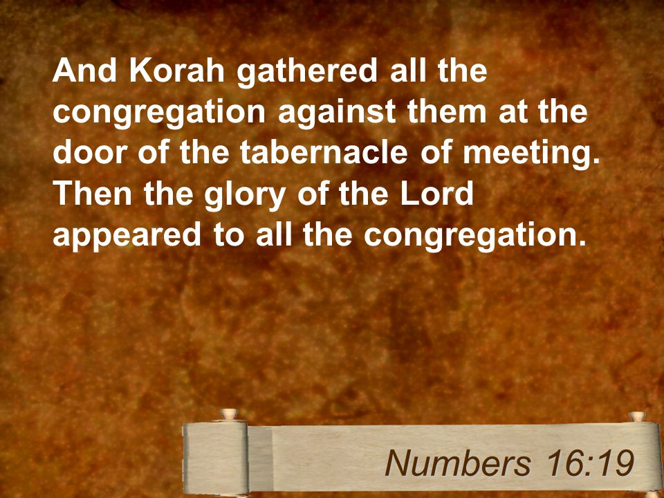 And Korah gathered all the congregation against them at the door of the tabernacle of meeting.