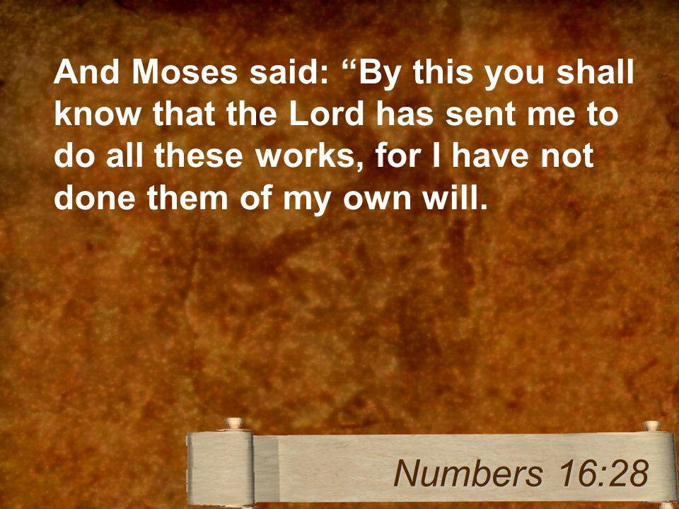 And Moses said: By this you shall know that the Lord has sent me to do all these works, for I have not done them of my own will.