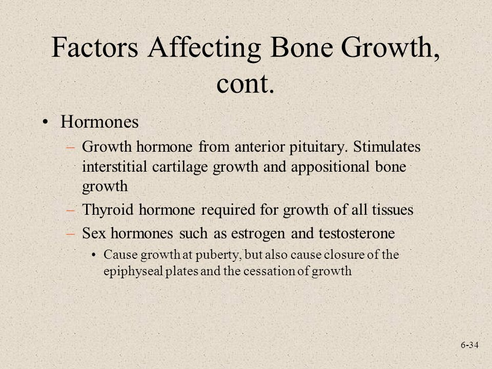 6-34 Factors Affecting Bone Growth, cont. Hormones –Growth hormone from anterior pituitary. Stimulates interstitial cartilage growth and appositional