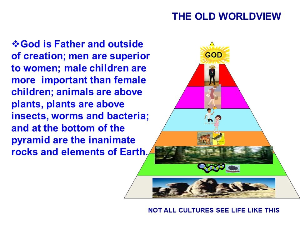 GOD NOT ALL CULTURES SEE LIFE LIKE THIS GOD  God is Father and outside of creation; men are superior to women; male children are more important than female children; animals are above plants, plants are above insects, worms and bacteria; and at the bottom of the pyramid are the inanimate rocks and elements of Earth.