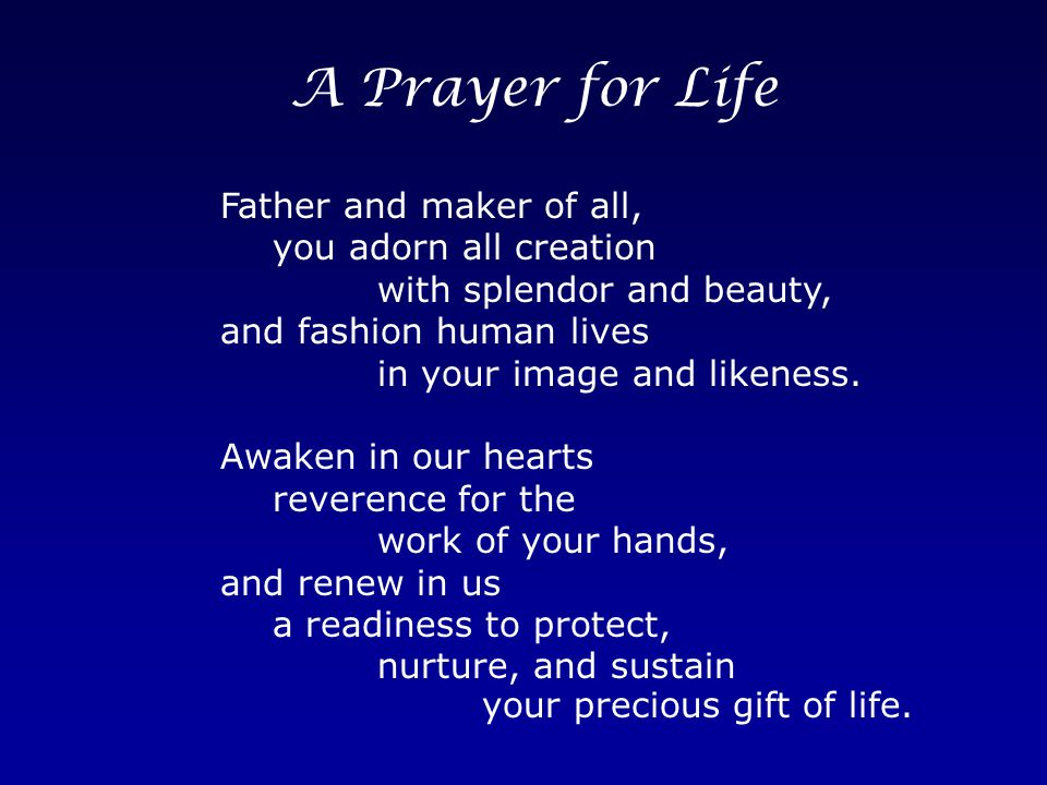A Prayer for Life Father and maker of all, you adorn all creation with splendor and beauty, and fashion human lives in your image and likeness.