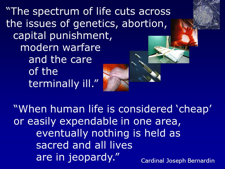 The spectrum of life cuts across the issues of genetics, abortion, capital punishment, modern warfare and the care of the terminally ill. When human life is considered 'cheap' or easily expendable in one area, eventually nothing is held as sacred and all lives are in jeopardy. Cardinal Joseph Bernardin