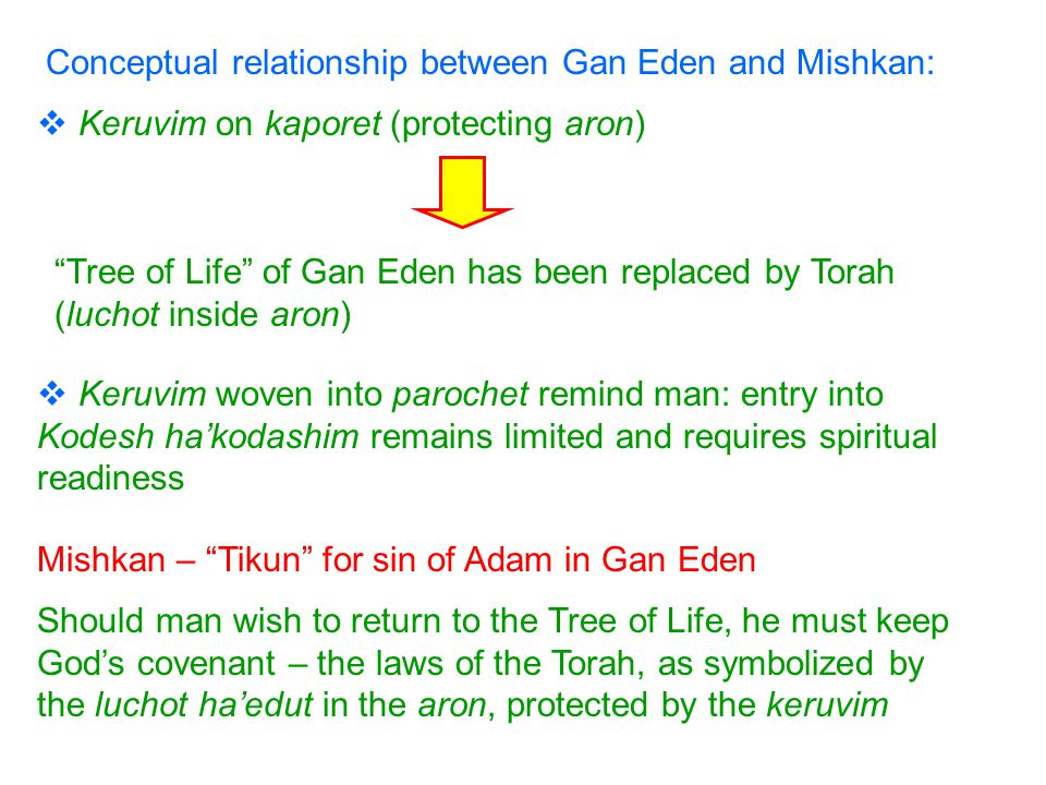 Conceptual relationship between Gan Eden and Mishkan:  Keruvim woven into parochet remind man: entry into Kodesh ha'kodashim remains limited and requires spiritual readiness Tree of Life of Gan Eden has been replaced by Torah (luchot inside aron)  Keruvim on kaporet (protecting aron) Should man wish to return to the Tree of Life, he must keep God's covenant – the laws of the Torah, as symbolized by the luchot ha'edut in the aron, protected by the keruvim Mishkan – Tikun for sin of Adam in Gan Eden
