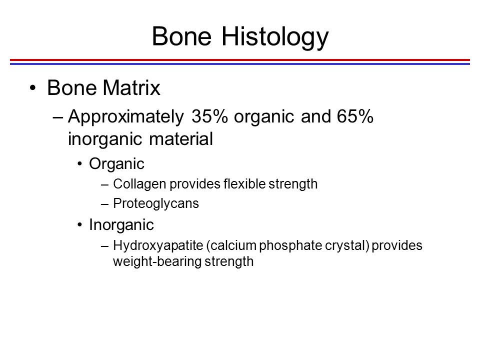 Effects of Changing the Bone Matrix Fig. 6.2