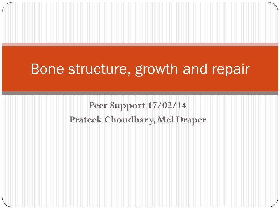 Peer Support 17/02/14 Prateek Choudhary, Mel Draper Bone structure, growth and repair