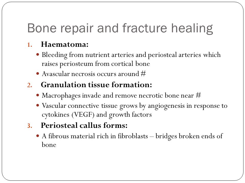 Bone repair and fracture healing 1. Haematoma: Bleeding from nutrient arteries and periosteal arteries which raises periosteum from cortical bone Avas