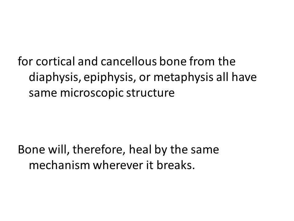 for cortical and cancellous bone from the diaphysis, epiphysis, or metaphysis all have same microscopic structure Bone will, therefore, heal by the same mechanism wherever it breaks.