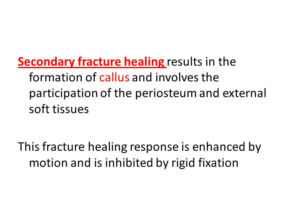 Secondary fracture healing results in the formation of callus and involves the participation of the periosteum and external soft tissues This fracture healing response is enhanced by motion and is inhibited by rigid fixation