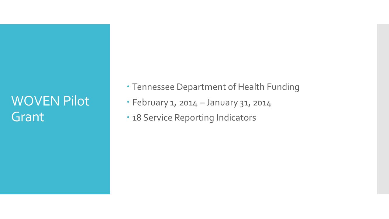 WOVEN Pilot Grant  Tennessee Department of Health Funding  February 1, 2014 – January 31, 2014  18 Service Reporting Indicators