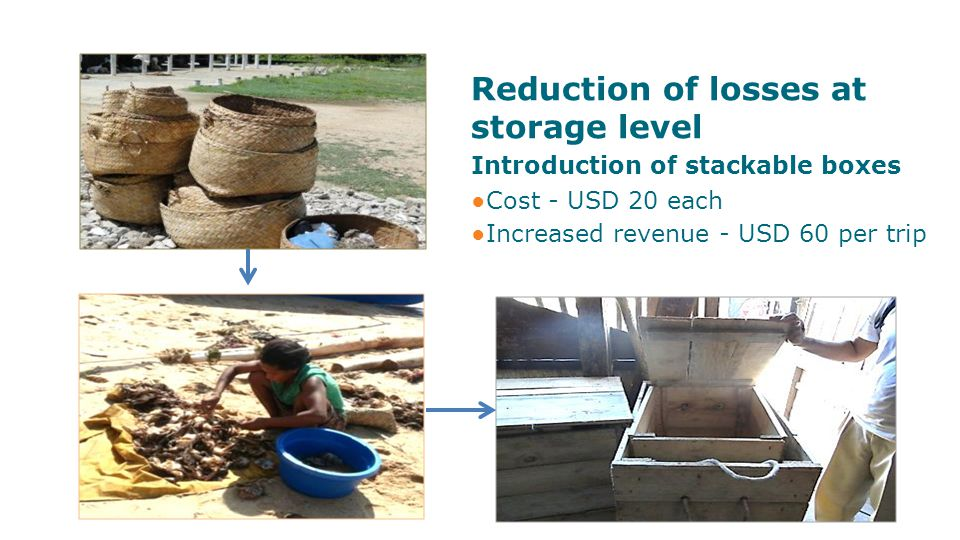 Reduction of losses at storage level Introduction of stackable boxes ●Cost - USD 20 each ●Increased revenue - USD 60 per trip
