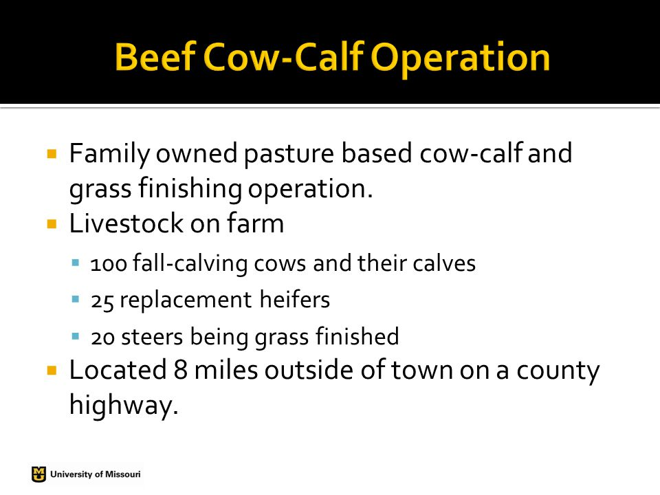  Family owned pasture based cow-calf and grass finishing operation.