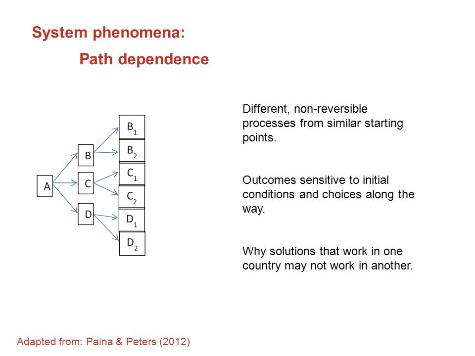 System phenomena: Path dependence Different, non-reversible processes from similar starting points.