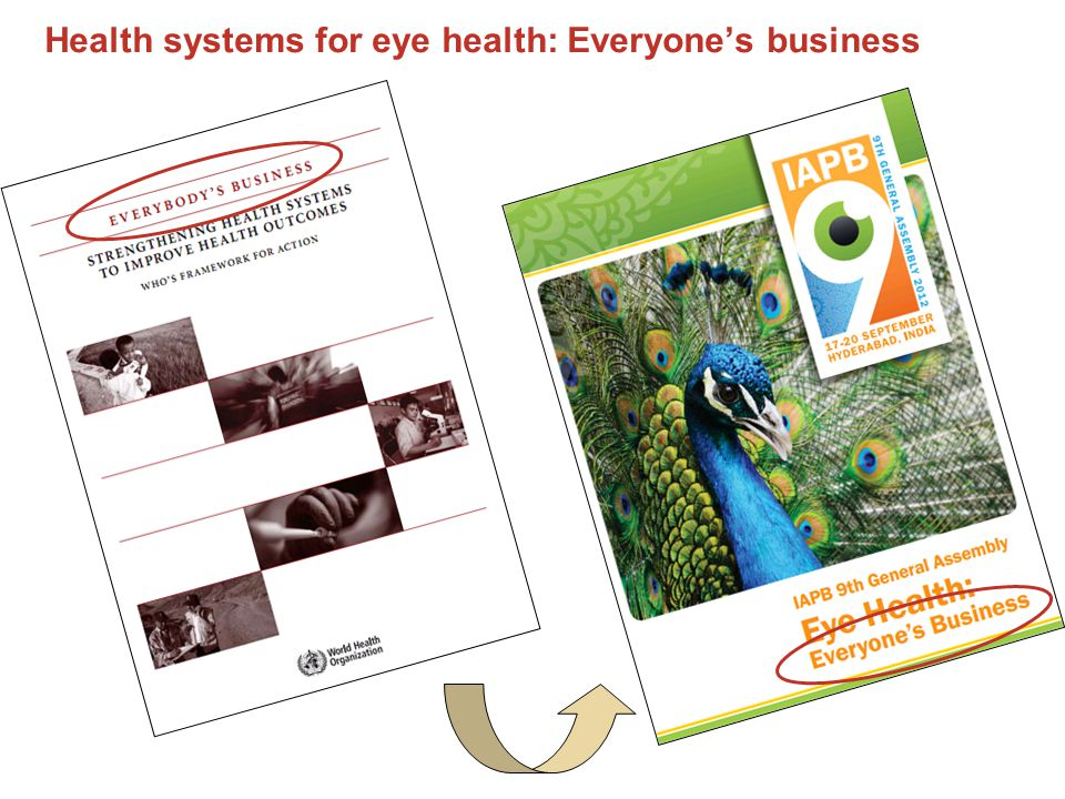 Health systems for eye health: Everyone's business