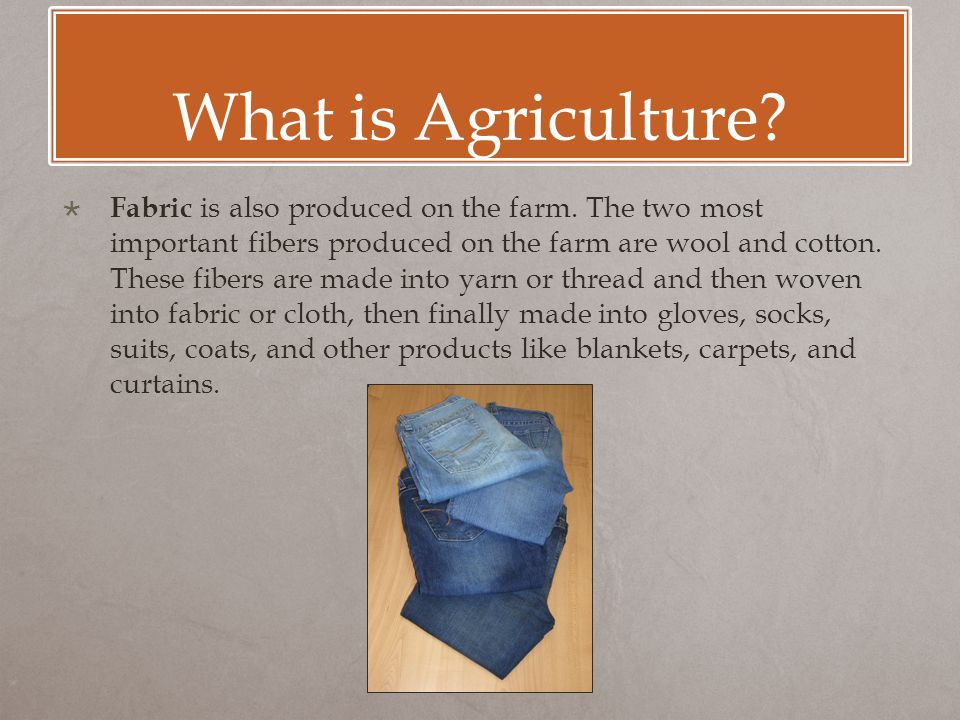 What is Agriculture.  Fabric is also produced on the farm.