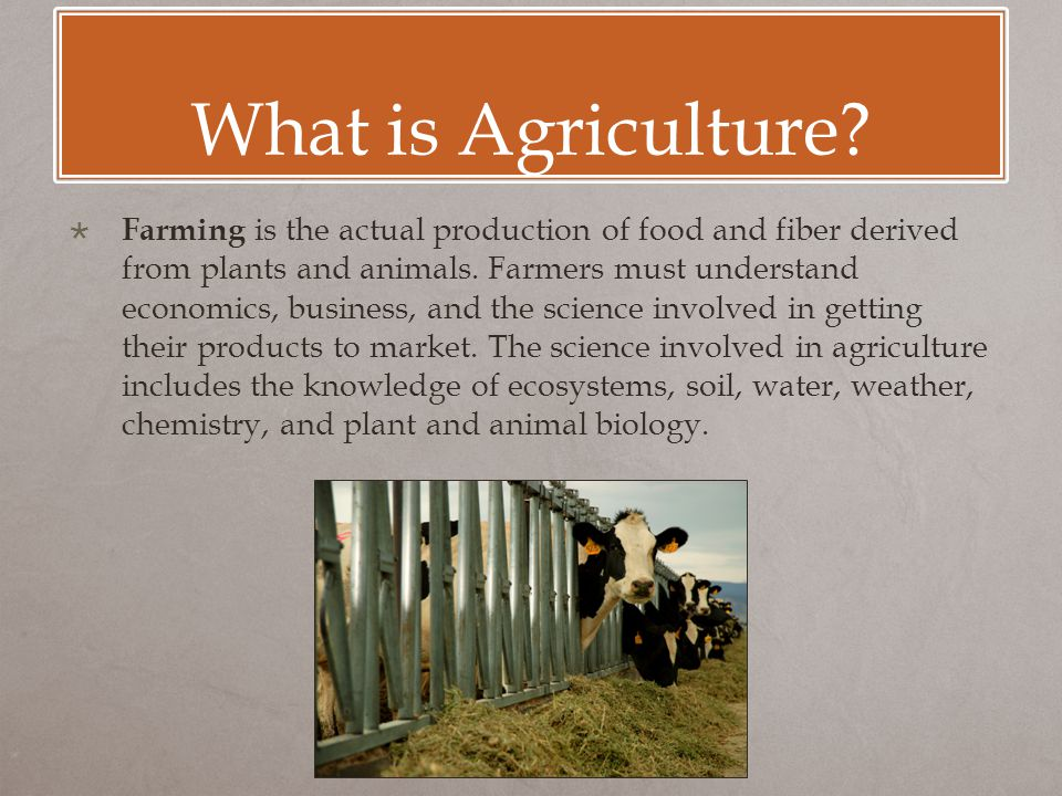 What is Agriculture?  Farming is the actual production of food and fiber derived from plants and animals. Farmers must understand economics, business