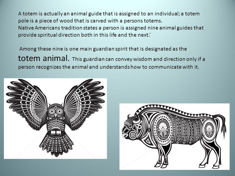 A totem is actually an animal guide that is assigned to an individual; a totem pole is a piece of wood that is carved with a persons totems. Native Am