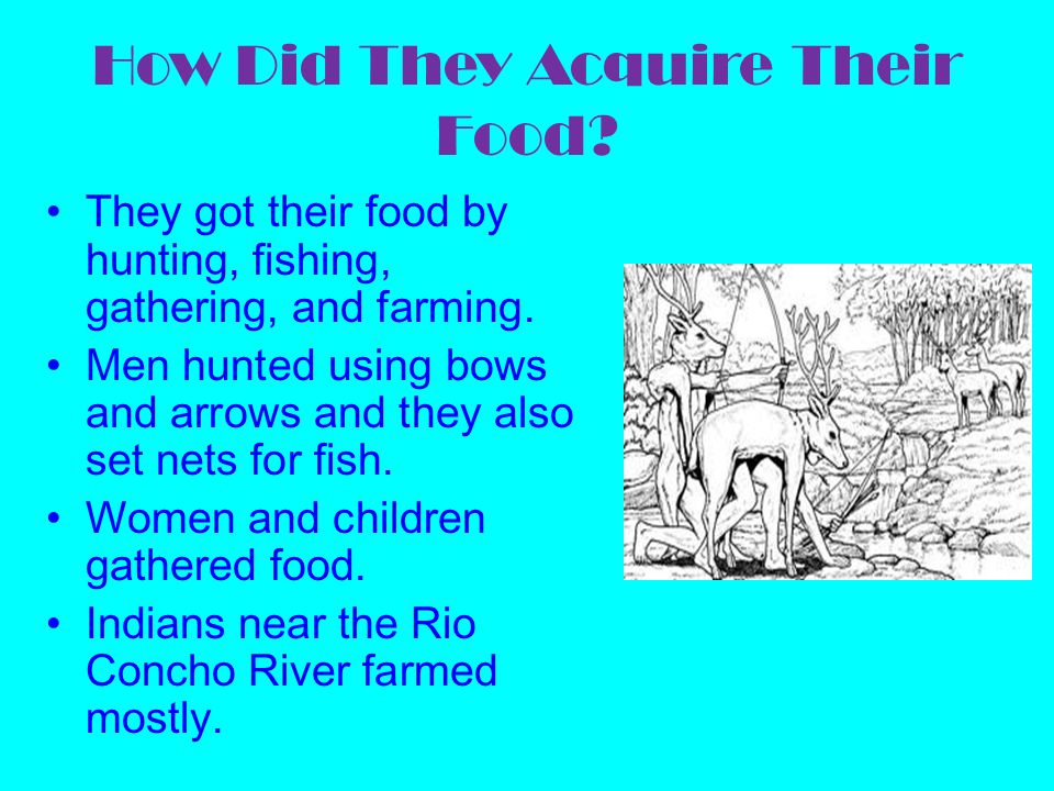 How Did They Acquire Their Food? They got their food by hunting, fishing, gathering, and farming. Men hunted using bows and arrows and they also set n