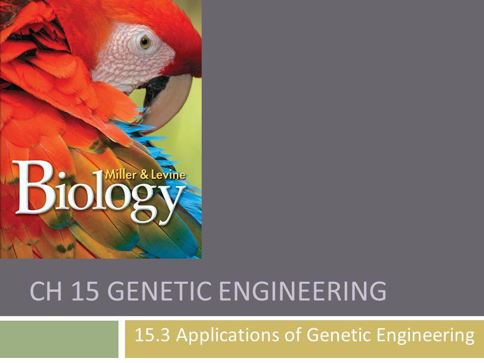 CH 15 GENETIC ENGINEERING 15.3 Applications of Genetic Engineering