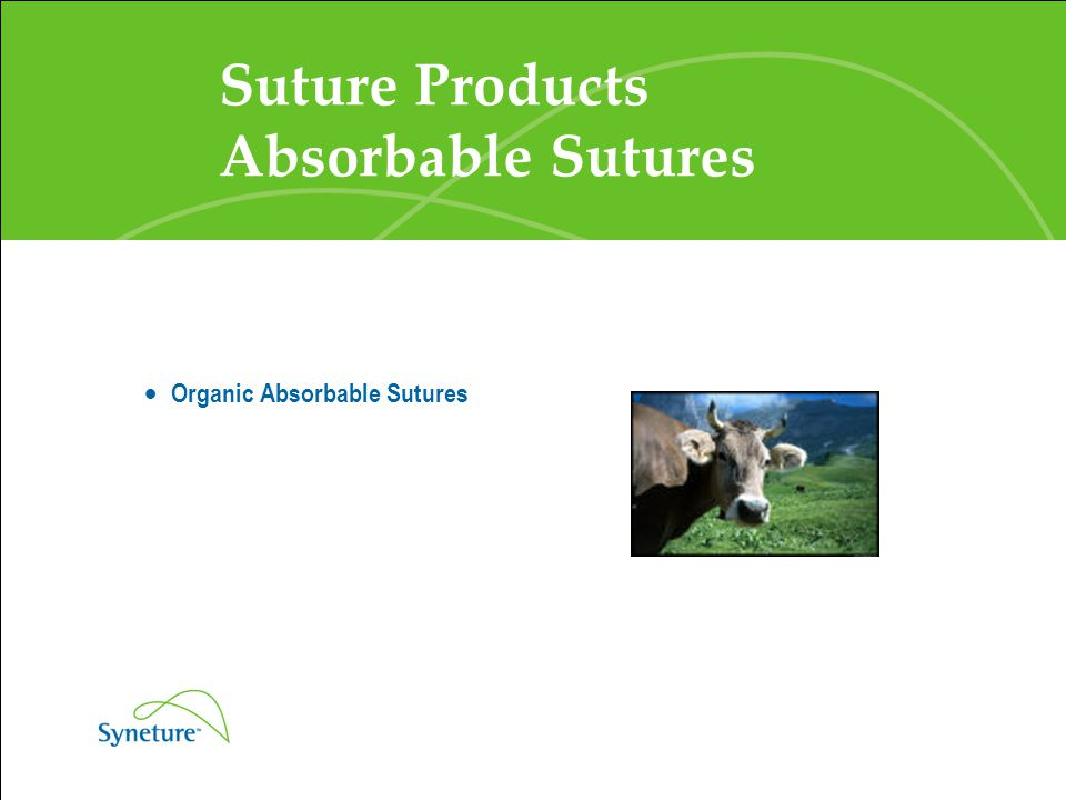 Suture Products Absorbable Sutures  Organic Absorbable Sutures