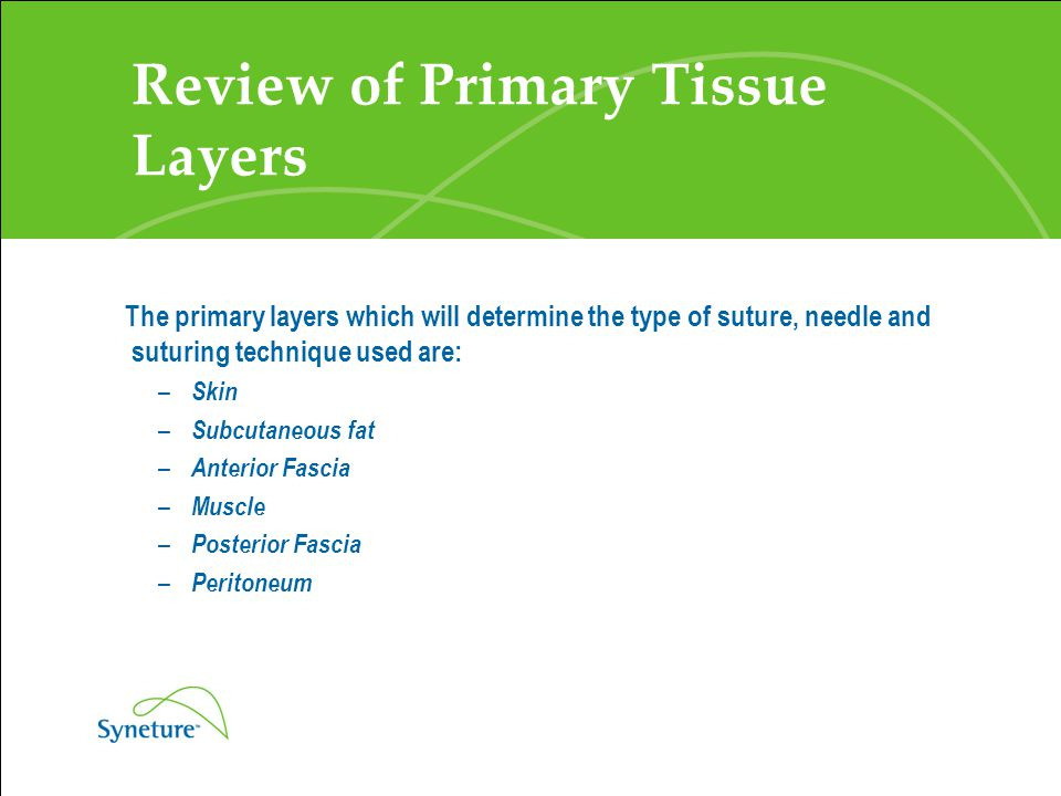 Review of Primary Tissue Layers The primary layers which will determine the type of suture, needle and suturing technique used are: – Skin – Subcutane