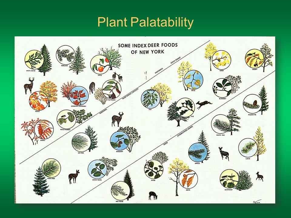 Plant Palatability