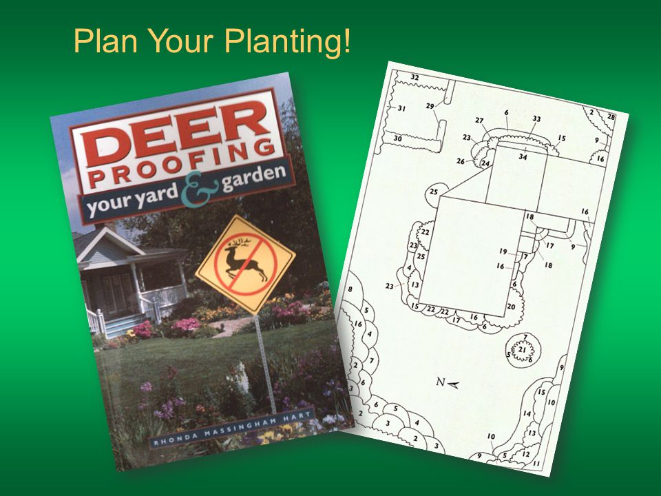 Plan Your Planting!