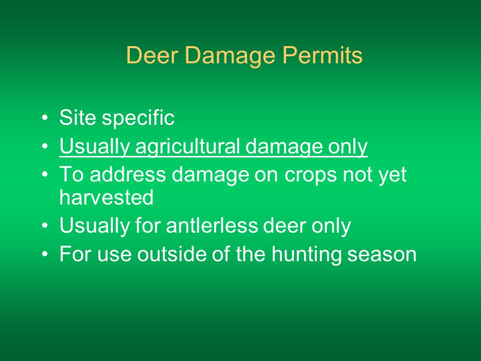 Deer Damage Permits Site specific Usually agricultural damage only To address damage on crops not yet harvested Usually for antlerless deer only For use outside of the hunting season