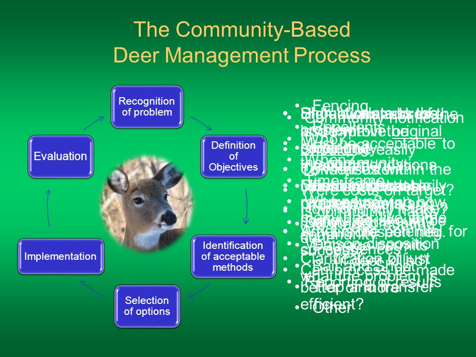 Recognition of problem Definition of Objectives Identification of acceptable methods Selection of options Implementation Evaluation The Community-Based Deer Management Process High awareness of the issue within the community Consensus within the community that a problem exists and something should be done Clarification of just what the problem is Should relate to the problem Should be easily measured Does not necessarily require knowing how many deer live in the community Must be acceptable to the community Must be affordable How long will it take.