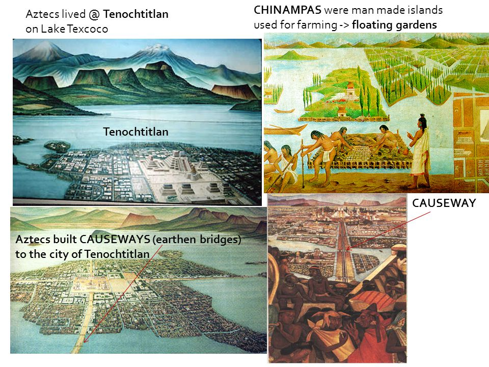 Aztecs lived @ Tenochtitlan on Lake Texcoco Aztecs built CAUSEWAYS (earthen bridges) to the city of Tenochtitlan CAUSEWAY CHINAMPAS were man made islands used for farming -> floating gardens Tenochtitlan