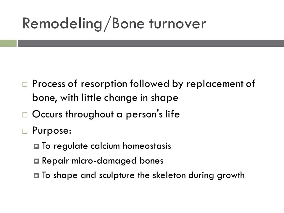 Remodeling/Bone turnover  Process of resorption followed by replacement of bone, with little change in shape  Occurs throughout a person s life  Purpose:  To regulate calcium homeostasis  Repair micro-damaged bones  To shape and sculpture the skeleton during growth