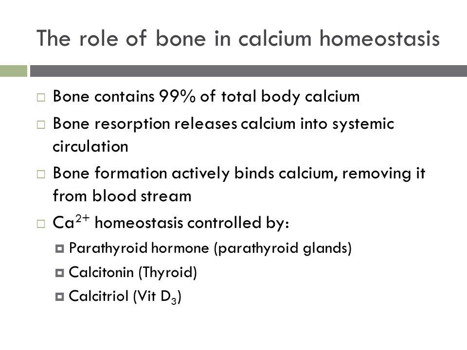 The role of bone in calcium homeostasis  Bone contains 99% of total body calcium  Bone resorption releases calcium into systemic circulation  Bone