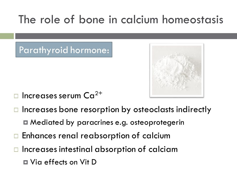  Increases serum Ca 2+  Increases bone resorption by osteoclasts indirectly  Mediated by paracrines e.g. osteoprotegerin  Enhances renal reabsorpt