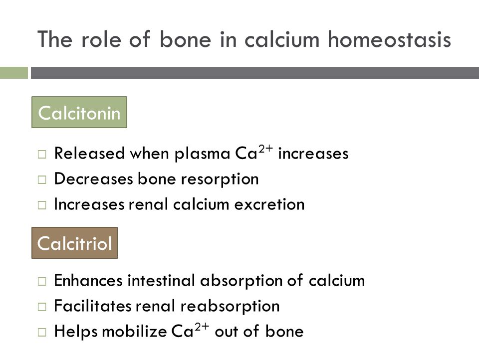  Released when plasma Ca 2+ increases  Decreases bone resorption  Increases renal calcium excretion  Enhances intestinal absorption of calcium  Facilitates renal reabsorption  Helps mobilize Ca 2+ out of bone The role of bone in calcium homeostasis Calcitonin Calcitriol
