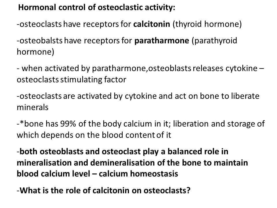 Hormonal control of osteoclastic activity: -osteoclasts have receptors for calcitonin (thyroid hormone) -osteobalsts have receptors for paratharmone (parathyroid hormone) - when activated by paratharmone,osteoblasts releases cytokine – osteoclasts stimulating factor -osteoclasts are activated by cytokine and act on bone to liberate minerals -*bone has 99% of the body calcium in it; liberation and storage of which depends on the blood content of it -both osteoblasts and osteoclast play a balanced role in mineralisation and demineralisation of the bone to maintain blood calcium level – calcium homeostasis -What is the role of calcitonin on osteoclasts