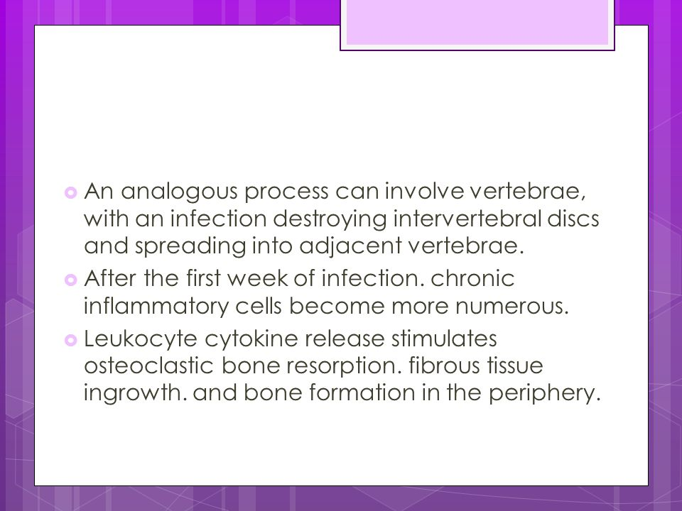  An analogous process can involve vertebrae, with an infection destroying intervertebral discs and spreading into adjacent vertebrae.  After the fir