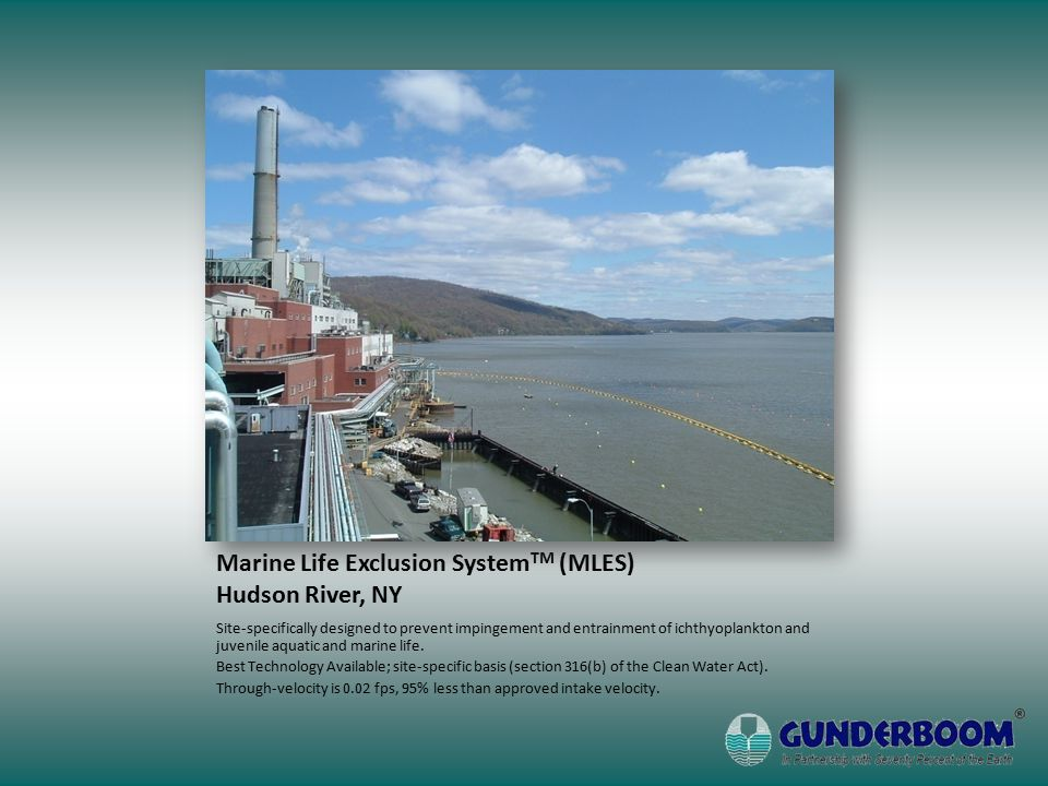 Marine Life Exclusion System TM (MLES) Hudson River, NY Site-specifically designed to prevent impingement and entrainment of ichthyoplankton and juvenile aquatic and marine life.