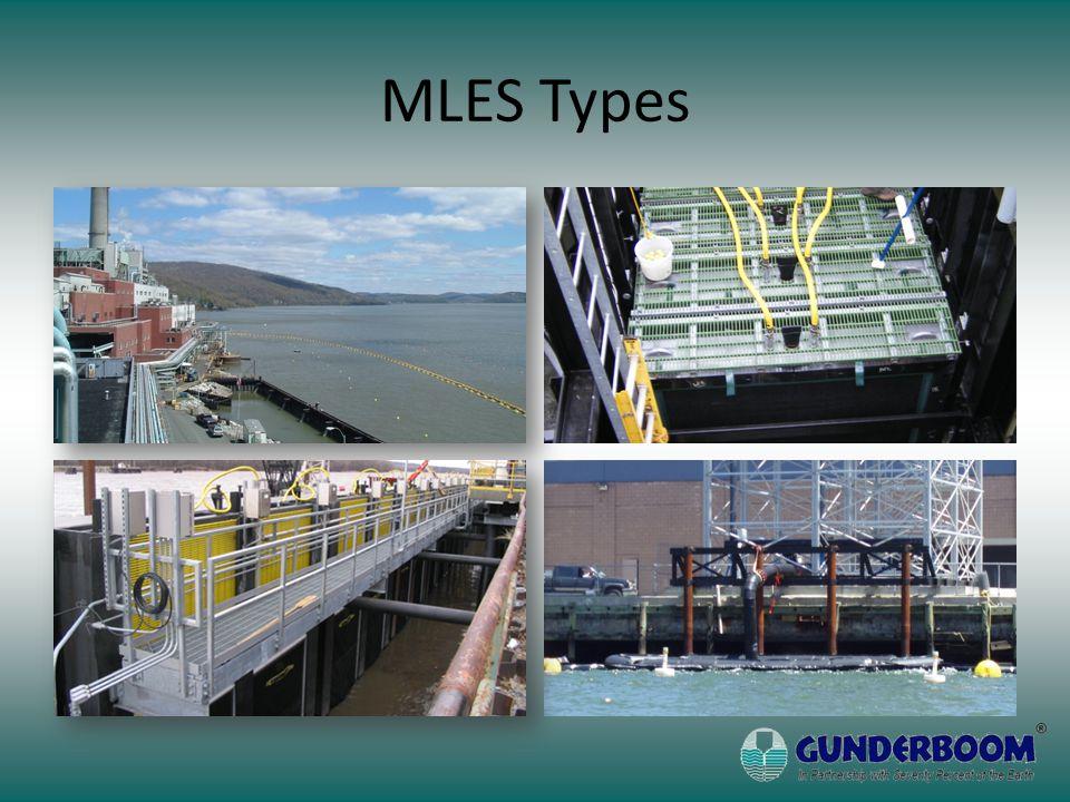MLES Types