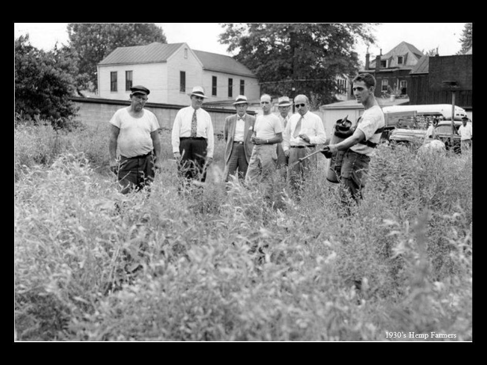 1930's Hemp Farmers
