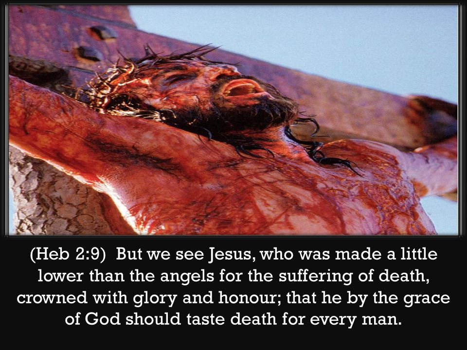 (Heb 2:9) But we see Jesus, who was made a little lower than the angels for the suffering of death, crowned with glory and honour; that he by the grac