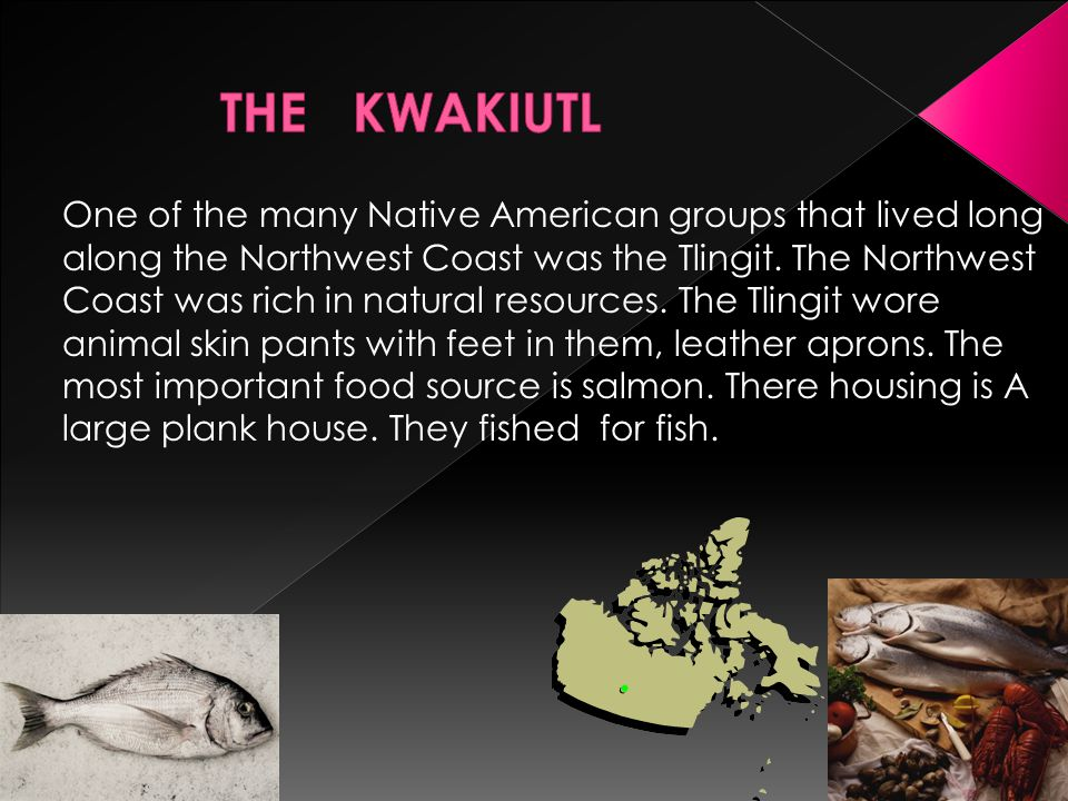 One of the many Native American groups that lived long along the Northwest Coast was the Tlingit. The Northwest Coast was rich in natural resources. T