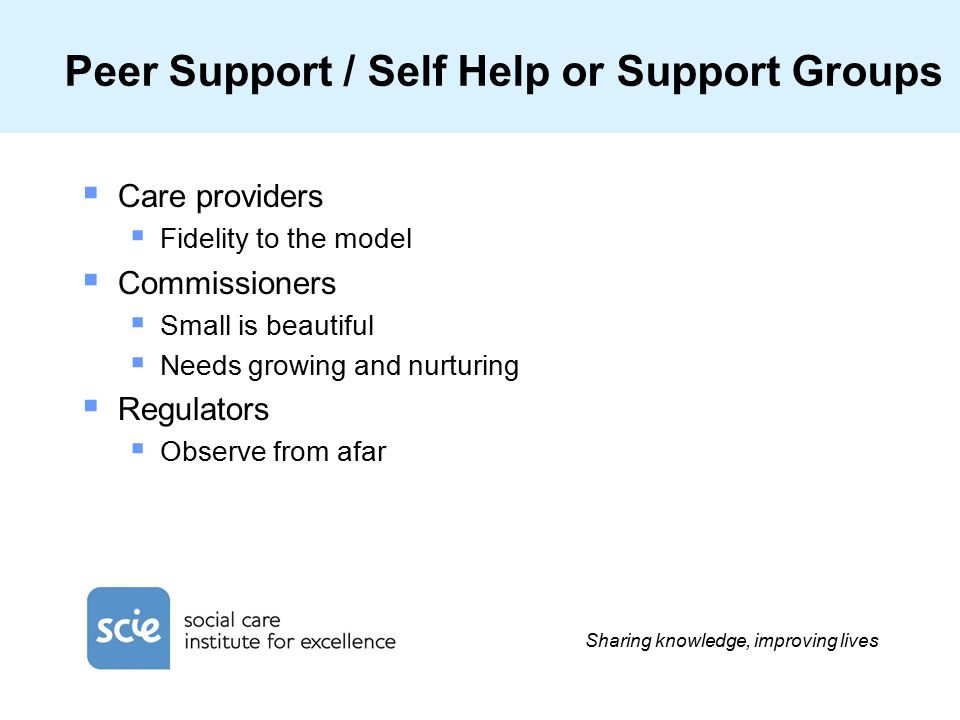 Sharing knowledge, improving lives Peer Support / Self Help or Support Groups  Care providers  Fidelity to the model  Commissioners  Small is beautiful  Needs growing and nurturing  Regulators  Observe from afar